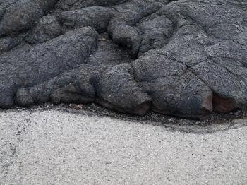 hawaii07'novinbig 258.jpg